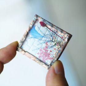 ハコミドリによる植物標本のワークショップ画像